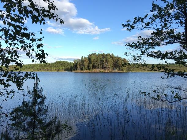 Teijon kansallispuisto, Teerisaari