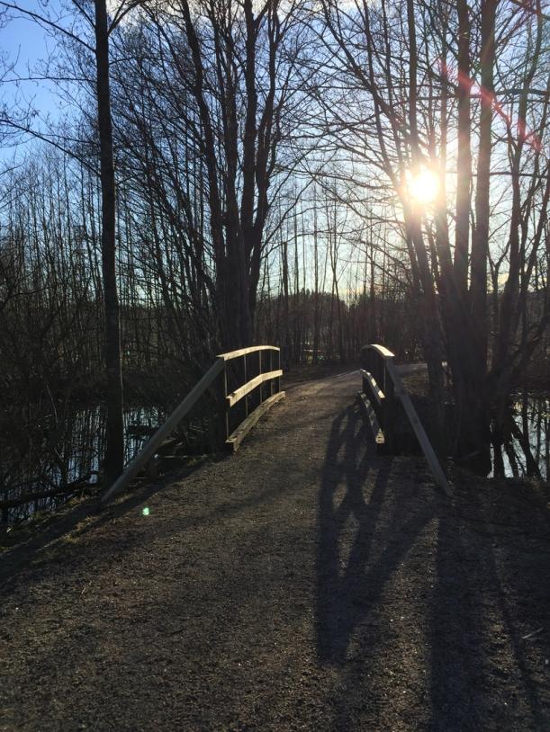 Mielipaikka silta. Kuva: Kaisa Vermasheinä / Juuret maassa