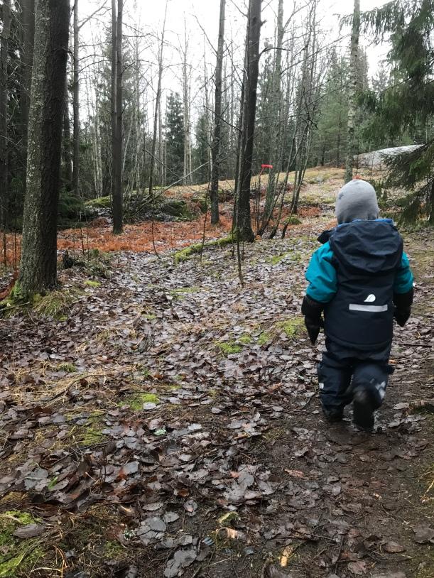 Lapsi metsässä, kuva: Kaisa Vermasheinä